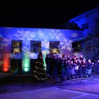 Holiday Festival Christmas Tree Lighting