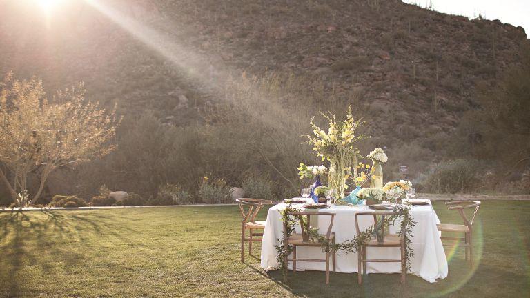 The Ritz Carlton, Dove Mountain - wedding