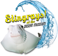Stingray Touch