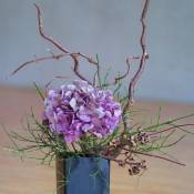 Ikebana for Everyone