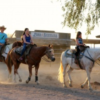 Marana Horse Country