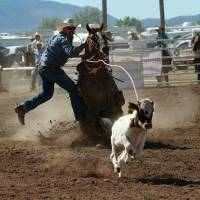 Sonoita Labor Day Rodeo
