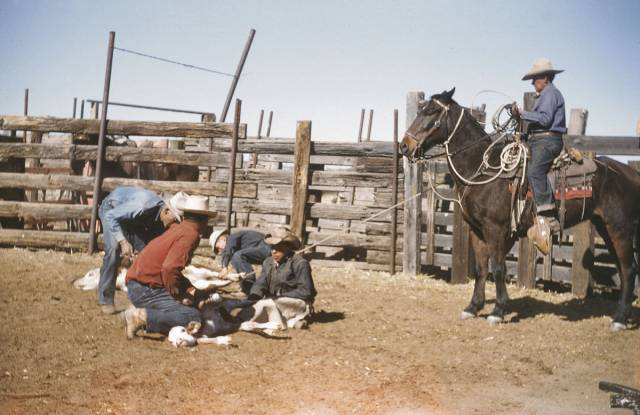 Tour of Historic Canoa Ranch