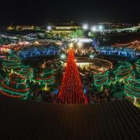 Sparkling Tree Lighting Holiday Festivals in Marana